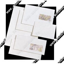 10 Enveloppes allongées avec fenêtre