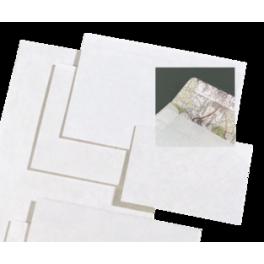 10 Enveloppes allongées sans fenêtre