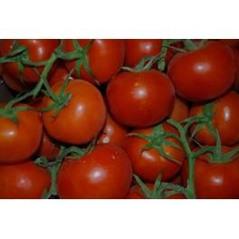 Velouté de tomates à la badiane