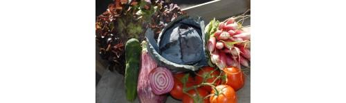 Les légumes frais